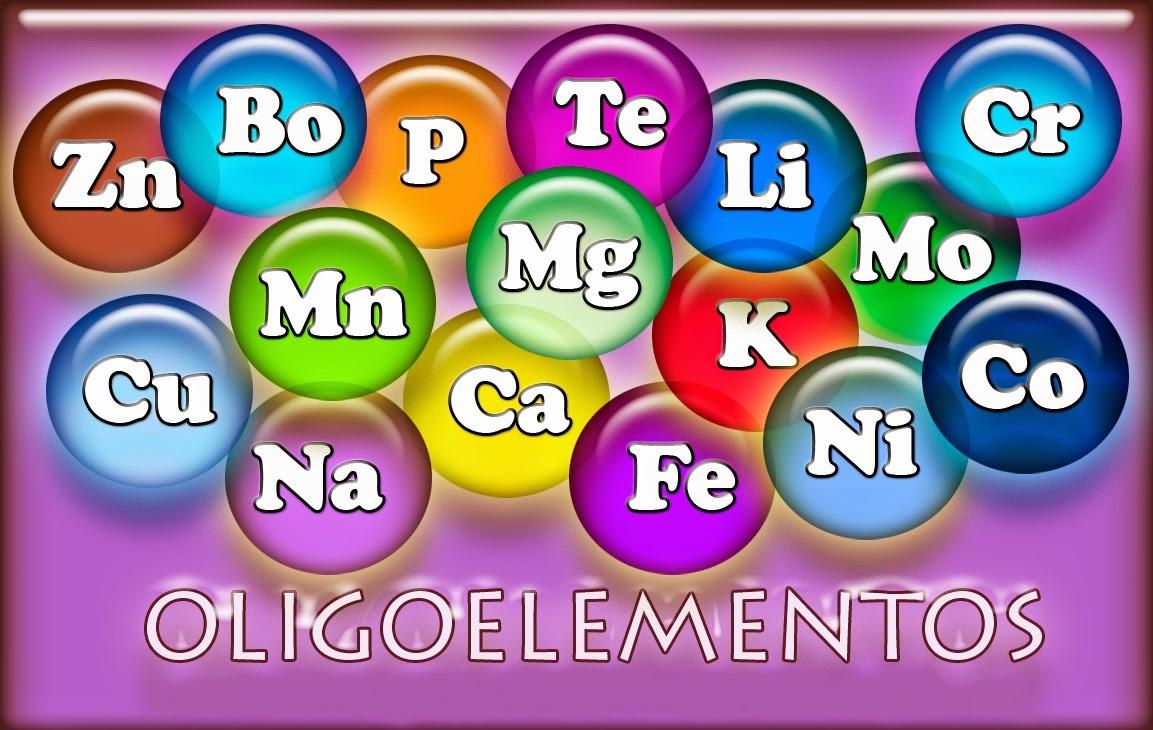 Los oligoelementos son minerales, en cantidades muy pequeñas, requeridos e imprescindibles para muchos procesos del organismo humano como la síntesis de las hormonas, la digestión de los alimentos, la reproducción celular y para el sistema de defensa del organismo. En la homeopatía y naturopatía se emplean los oligoelementos como herramienta terapéutica. En esta sección encontrarás oligoelementos de calidad como boro, cobre, bismuth, cobre-oro-plata, cobalto, cromo, flúor, yodo, potasio, litio, manganeso, magnesio, níquel... entre otros. ¡Compra en nuestra farmacia online los mejores oligoelementos para tu salud y la de los tuyos!