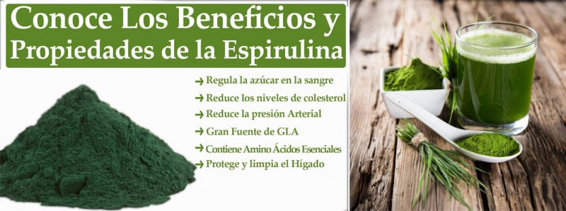 Suplementos alimenticios más recomendables para las personas mayores Calcio Vitamina D Magnesio Omega 3 Vitamina B12 ESPIRULINA + CHLORELLA BIO Levavida Multivitamínico Vegan Reina Real 3-D