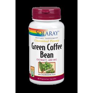 El café verde es el grano el café sin tostar y tiene un alto contenido en ácido clorogénico, el cual evita la infiltración de grasa y activa la enzima adenylate cyclose, que es capaz de estimular el metabolismo de los lípidos. Diversos estudios han concluido que el café verde favorece la pérdida de peso al saciar el apetito, pues posee un alto contenido en compuesto fenólicos, por lo que aumenta la secreción intestinal del neuropéptido GLP1, el cual envía al cerebro una señal que activa los centros de saciedad. Además el ácido clorigénico tiene un efecto beneficioso sobre el metabolismo de la glucosa, ya que reduce su aborsicón y disminuye el máximo hiperglucémico.  La cafeína presente en este fruto estimula la actividad celular y obliga a quemar más grasas. Es rico en flavonoides, que actúan en sinergia con la cafeína en la combustión de grasas. Alarga la vida de la adrenalina, hormona responsable de obtener grasa del tejido adiposo para consumo celular. Interfiere en la actividad de enzimas digestivas del intestino, aumentando el nivel de azúcares y grasas eliminados. Además es un excelente antioxidante.
