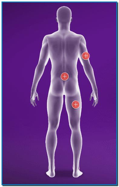 CUIDA DE TU MUSCULATURA CON FISIOCREM Cada músculo tiene un tratamiento único y una recuperación específica