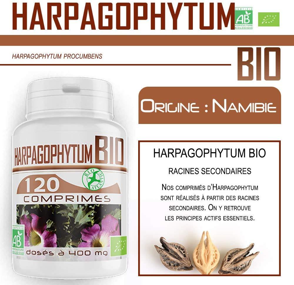 Bio Atlantic poudre d'Harpagophytum racine issu de l'agriculture biologique sous forme de comprimés dosés à 400 mg.